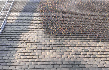 Roof Cleaning Moss Removal Services Camberley New